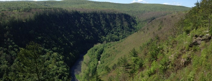 Pennsylvania's Little Grand Canyon is one of Lieux qui ont plu à Christopher.