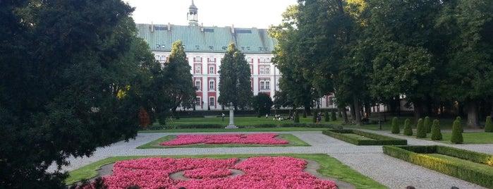 Park im. Fryderyka Chopina is one of Poznan.