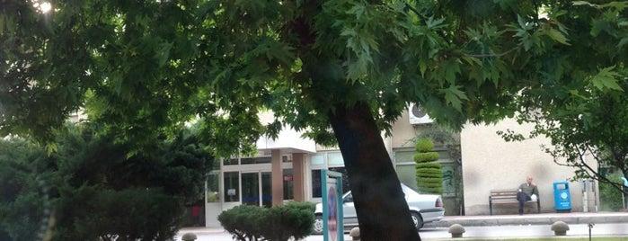Tıp Fakültesi Hastanesi is one of Lieux qui ont plu à Erkan.