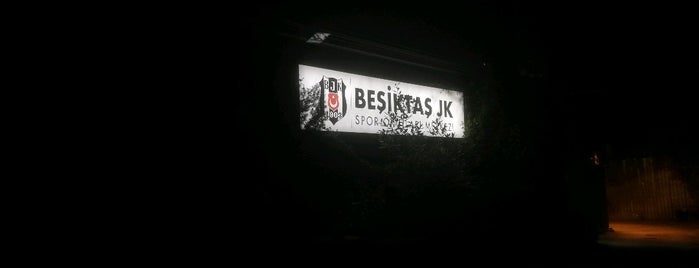 Beşiktaş Fulya Hakkı Yeten Tesisleri is one of Posti che sono piaciuti a Yeliz.