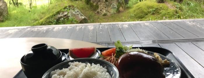 肉のやしろ 青木亭 is one of Lugares favoritos de Shigeo.
