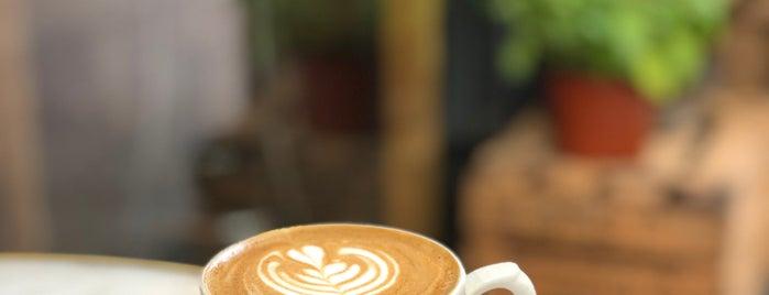 Camelia Art Café is one of Dolç.