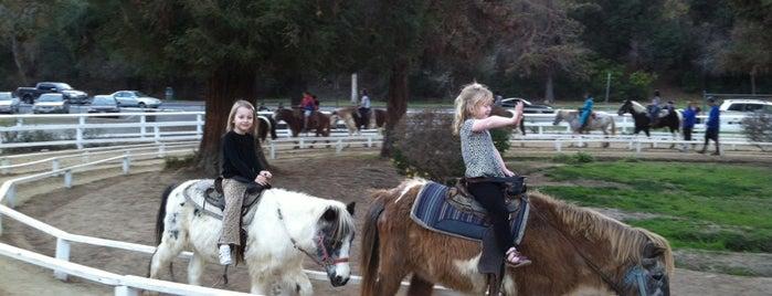 Griffith Park Pony Rides is one of Lugares favoritos de Maria.