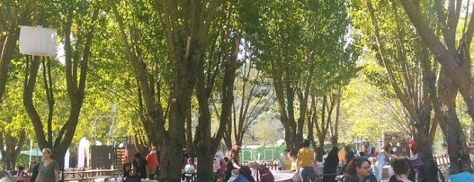 Aktivitem Park is one of Yeme içme.
