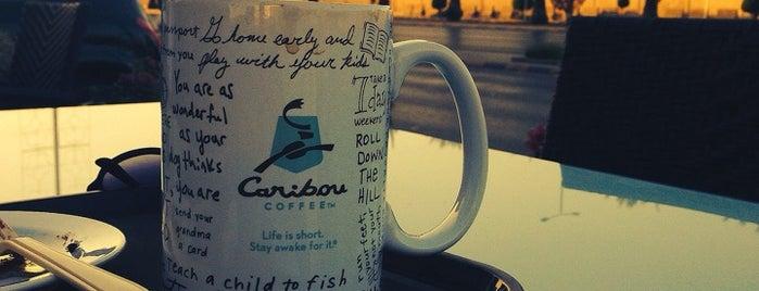 Caribou Coffee is one of Riyadh New.