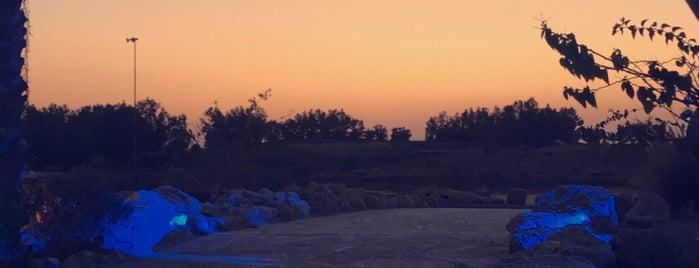 Riyadh Golf Courses is one of تركي مطرب فواز 님이 저장한 장소.