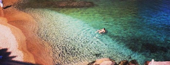 Agia Anna Beach is one of Valeria 님이 좋아한 장소.