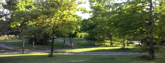 Parque de La Ribota is one of Tempat yang Disukai Jonatan.