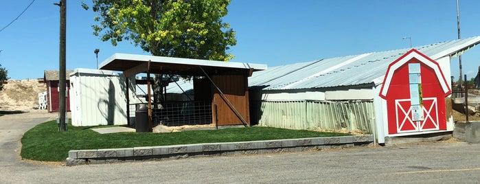 Reed's Dairy Inc. is one of Lieux sauvegardés par Mike.
