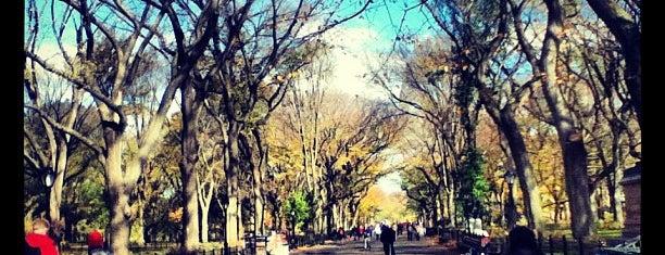 Центральный парк is one of New York.