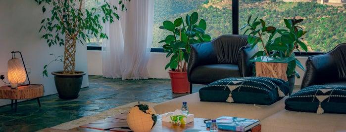 بيت السهو Alsaho Villa is one of ابها.