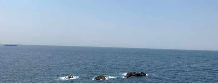 潮岬の鯨山見 is one of Shigeo'nun Beğendiği Mekanlar.