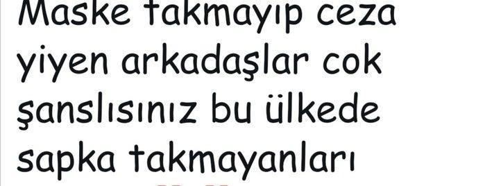 "Emek is one of ""Zirve""de Gece Hayatı."