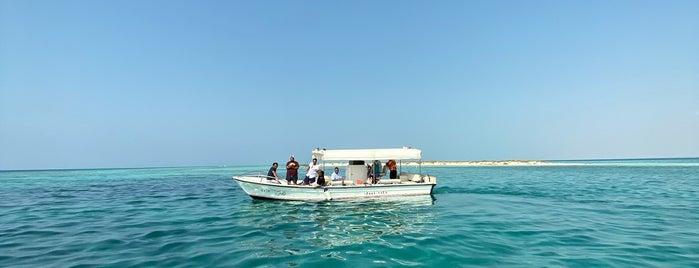 بحر أملج   الدقم is one of Tempat yang Disimpan Queen.
