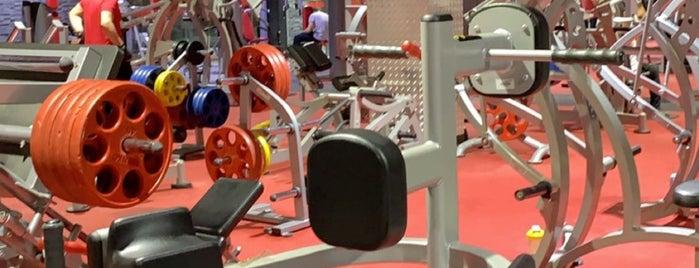 Fitness Time Ladies is one of Orte, die Muneera gefallen.