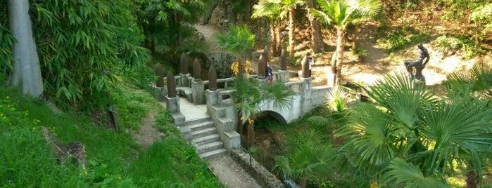 Giardino Del Vittoriale is one of Posti che sono piaciuti a Stefan.