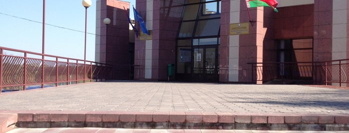 Футбольный клуб «Минск» is one of Еленаさんのお気に入りスポット.
