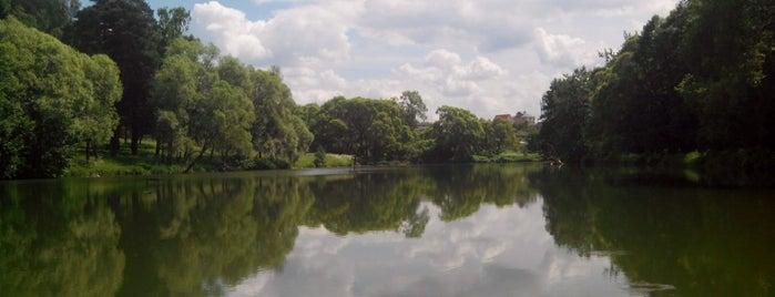 Озеро в Голыгино is one of สถานที่ที่บันทึกไว้ของ Gregory.
