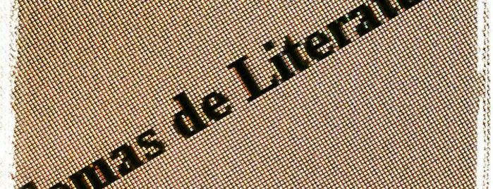 Temas de Literatura de Língua Inglesa is one of Faculdade.