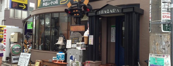 Curry Station Niagara is one of TOKYO-TOYO CURRY-5.