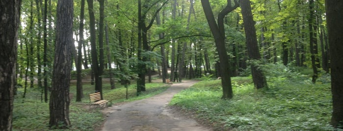 Личаківський парк is one of LVIV.