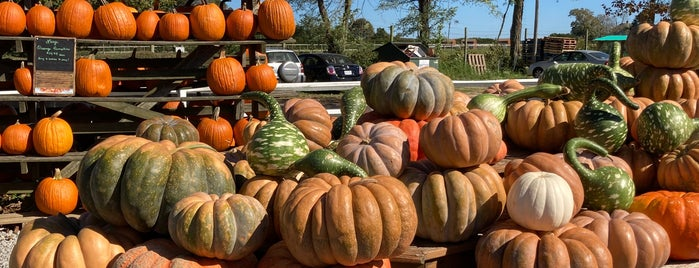 Sound Shore Market & Farms is one of Long Island NY.