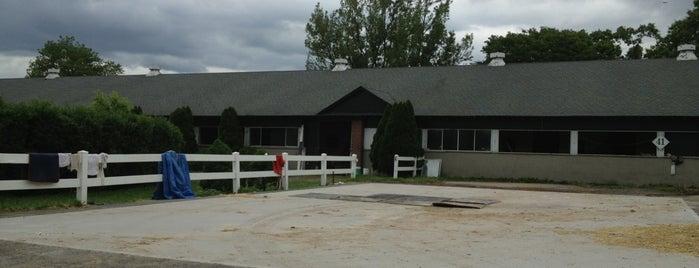 Belmont Park Barn area is one of Locais curtidos por Montana.