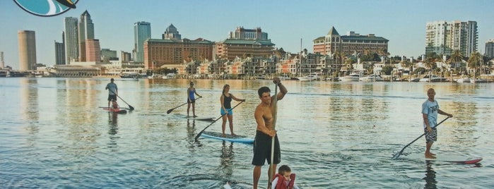 Urban Kai Paddleboarding Rental is one of Best of South Tampa Outdoors.