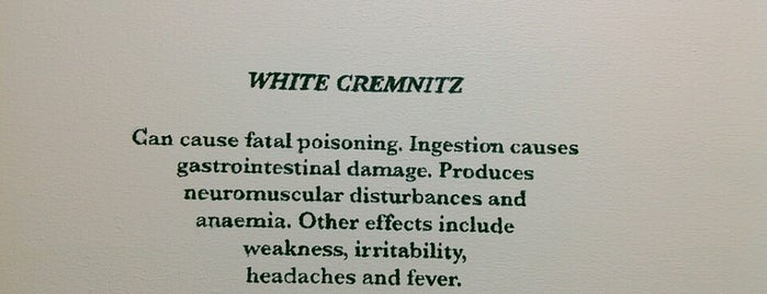White Cremnitz is one of Lugares guardados de ARTURO.