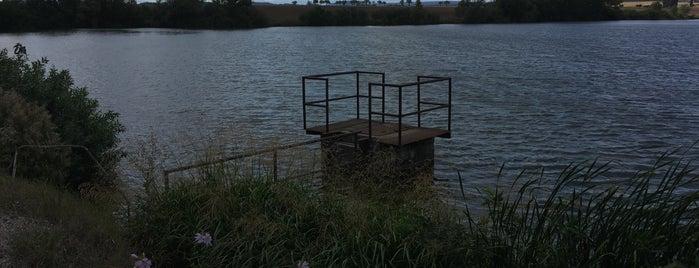 Nový rybník is one of Swimming.
