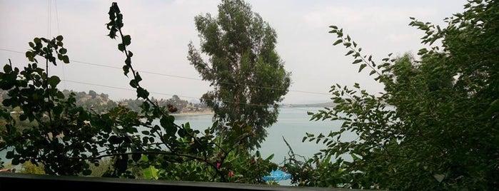 สถานที่ที่ Erkan ถูกใจ
