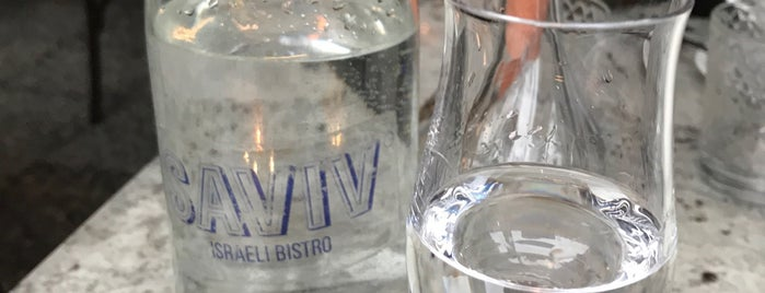 Saviv is one of SPB.
