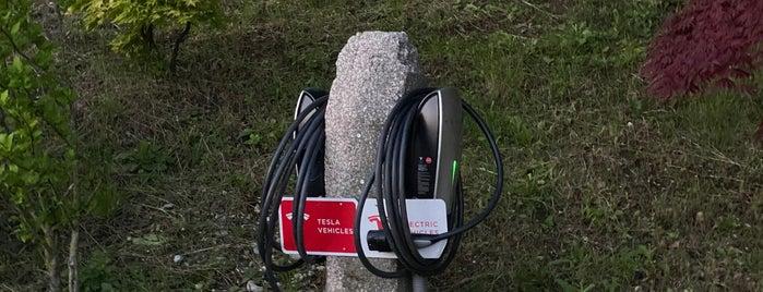 Tesla Destination Charger Tulbinger Kogel is one of Elektroladesäulen.