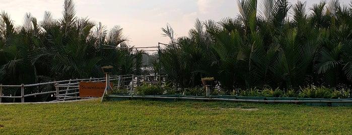 Silk Sense Resort is one of Danang&Hoian+.