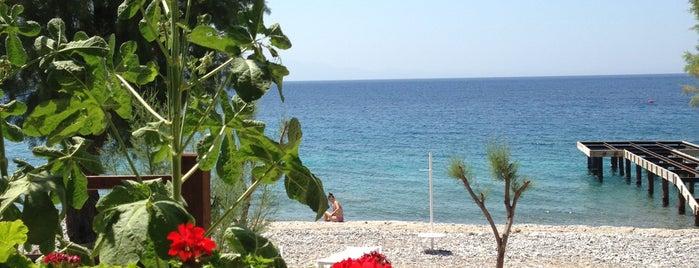 Hasan Motel Beach Restaurant is one of Bodrum Rehberi.