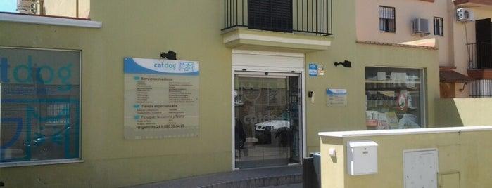 CATDOG Centro Veterinario is one of Posti che sono piaciuti a Wabi Sabi.