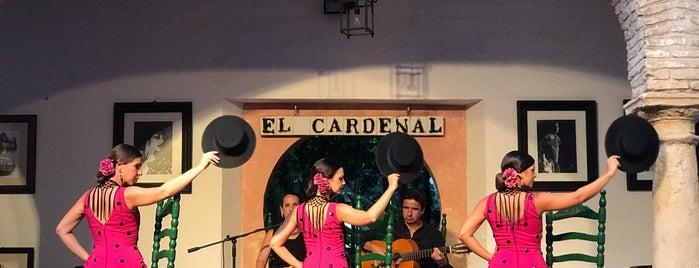 Tablao Flamenco El Cardenal is one of Cordoba 17.