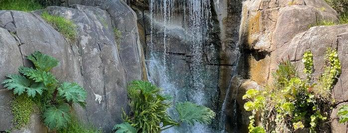 Huntington Falls is one of City: San Fracisco, CA.