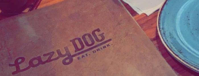 Lazy Dog Restaurant & Bar is one of Places to try.