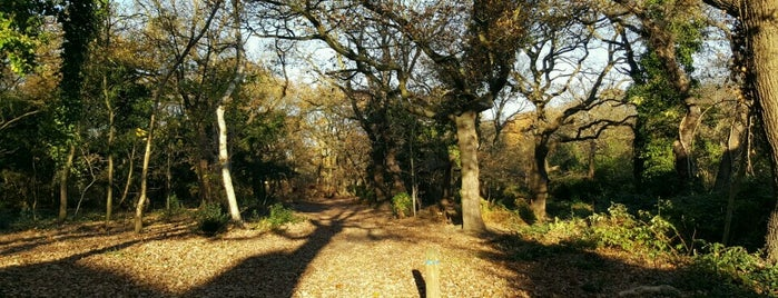 Lesnes Abbey Woods is one of Tempat yang Disimpan Deborah Lynn.