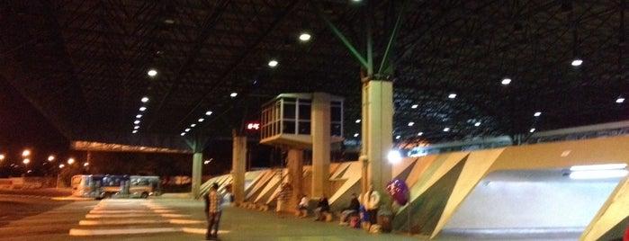 Terminal Rodoviário de Bauru is one of mara.