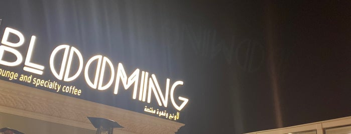 Blooming Lounge is one of ابها.