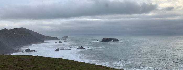 Goat Rock State Park is one of Beyond the Peninsula.