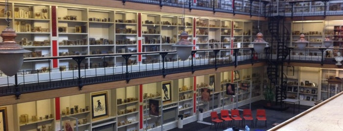 Barts Pathology Museum is one of New London to dos.