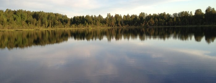 Озеро Сяркилампи is one of สถานที่ที่ Antonio ถูกใจ.