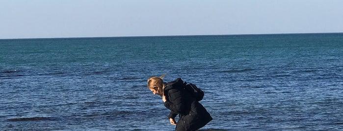 Onda Marina is one of Lezzet Noktaları (İstanbul).
