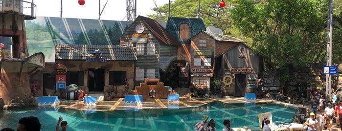 Sea Lion Show is one of Posti che sono piaciuti a Fai.