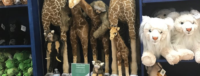 Naples Zoo Gift Shop is one of Locais curtidos por Michael.