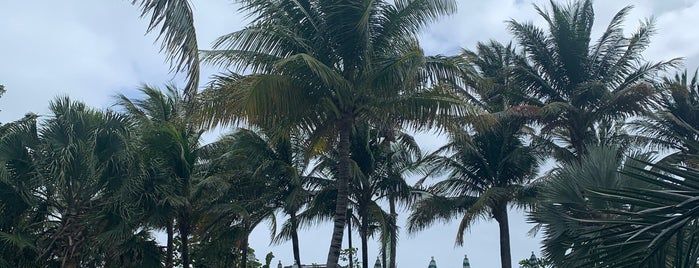 The Confidante Miami Beach is one of Locais curtidos por Meghan.