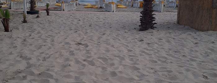 Dharma Beach Club is one of Posti salvati di Berkan.